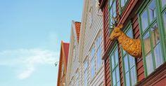 Skrivebordsbakgrunn: Hjorten på Bryggen / The deer on the wharf I Wallpaper, Deer, Louvre, Building, Travel, Viajes, Buildings, Destinations, Traveling