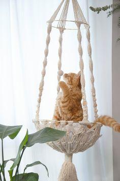 Macrame cat hammock Woven hanging dog bed Macrame wall cat swing Cat lover gifts Cute boho Crochet r Diy Cat Hammock, Design Patio, Cat Wall Furniture, Boho Crochet, Cat Bedroom, Cat Basket, Macrame Plant Hangers, Macrame Design, Macrame Projects
