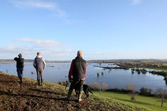 Media provides poor coverage of  major climate change report released in UK. Flooding on the Somerset Levels in February 2014 (© Alastair Grant/AP/Press Association Images)