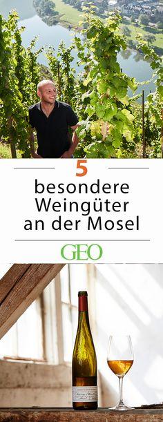 Reisetipps: Wir stellen fünf Winzer vor, die ihr Handwerk so gut verstehen, dass sie Riesling und Co. neue Qualität einhauchen - Zeit aufzubrechen, zu den besten Weingütern an der Mosel!