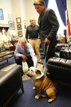 I went to Congress to lend support for National #ServiceDog month and the monument to Military Working Dogs! #mwd