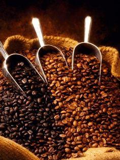 the best healthy coffee beans https://montavida.com/?RIN=L560215