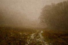 Fog /II  variation