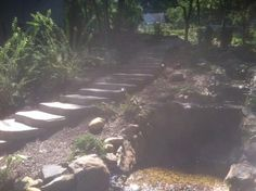 Where would your Cambridge Cast Stone Steps lead you?  These steps were installed by Milazzo Landscape Development.