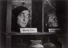 photos from frankenstein the movie   32 young frankenstein 33 mary shelley s frankenstein