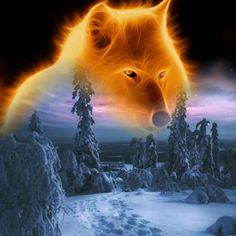Spirit in golden Fire 🔥 Native American Wisdom, Native American Pictures, Beautiful Wolves, Animals Beautiful, Lions Live, Baby Wolves, Red Wolves, Wolf Artwork, Wolf Spirit Animal