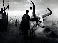 "Sebastiao Salgado - ""Dinka group at Pagarau cattle camp, Southern Sudan"""