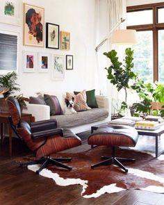 Living - woonkamer - kamerplant
