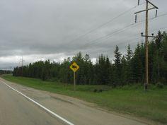 Northern Alberta.