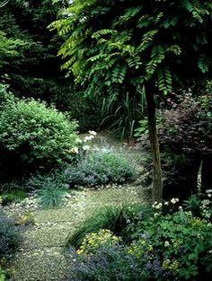 Bäume Für Kleine Gärten | Gartenprojekte | Pinterest Baum Fur Den Garten Outdoor Bereich Perfekt Geeignet