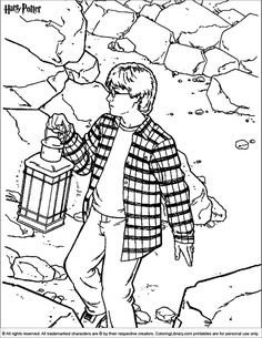 Harry potter chamber of secrets coloring pages Since the release of the first novel, Harry Potter and the Philosopher's Stone, on 26 June the books have found immense popularity, critical acc. Easy Coloring Pages, Colouring Pics, Cartoon Coloring Pages, Printable Coloring Pages, Coloring Books, Coloring Sheets, Adult Coloring, Harry Potter House Quiz, Harry Potter Facts