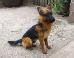 A needle felted German Shepherd whom I have called Tzar. here is is doing a sit and stay.