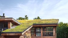 How To Design A Living Roof That Saves Energy - A bright, spacious house in Maine showcases eco-friendly architecture at its luscious best.