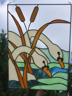 Swans and cattails