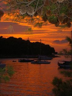 Dalmatian sunset in Cavtat, Croatia (by christina_2008).
