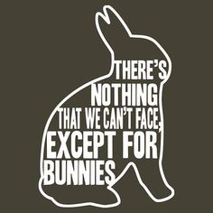 There's nothing that we can't face, except for bunnies by Brian Edwards by Redbubble - Teenormous.com