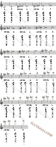 Fingering Chart for the flute Flute Fingering Chart, Flute Sheet Music, Native American Flute, Band Nerd, Music Theory, Teaching Music, Music Lessons, Music Is Life, Music Bands