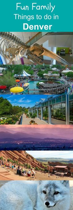 Eight Fun Things To Do In Denver On Your Family Vacation
