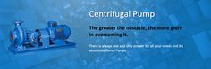 We are one of the leading centrifugal pump manufacturers, distributors and Traders in Centrifugal Pumps, Agitator, Dosing Pump, Metering Pump, Plunger Pump, High Pressure Pump, Dosing System, Diaphragm Pump in Mumbai, Chennai and all over India.