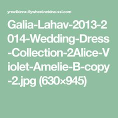 Galia-Lahav-2013-2014-Wedding-Dress-Collection-2Alice-Violet-Amelie-B-copy-2.jpg (630×945)