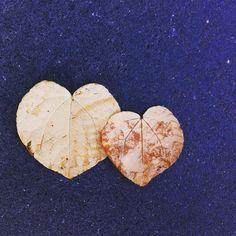 Doppel Herz