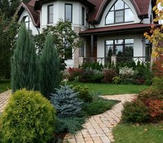What You Can Do To Improve Your Landscaping using Garden Arbor Everyone that owns a home wants to take pride in it. Beautiful Gardens, Front Garden Landscape, Conifers Garden, Front Patio, Backyard Landscaping, Front Yard Landscaping, Garden Planning, Garden Design, Cottage Garden