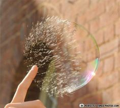 Bubble Popping