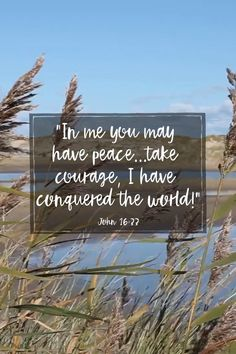 Faith Quotes, Bible Quotes, Prayer For Anxiety, Perfect Peace, Catholic Quotes, Scripture Verses, Anxious, Christian Quotes, Authors