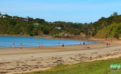 Take a closer look around Auckland with this collection of unique local photographs. Use our image galleries to inspire and help you plan your next Auckland trip. New Zealand Beach, Waiheke Island, Us Images, Auckland, Beaches, Golf Courses, Water, Outdoor, Gripe Water