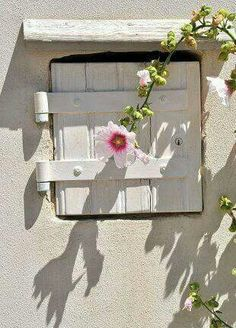 [The hollyhock is very pretty, and so are the shadow patterns. Old Windows, Windows And Doors, Window Dressings, Window View, Hollyhock, Through The Window, Old Doors, Window Boxes, Light And Shadow