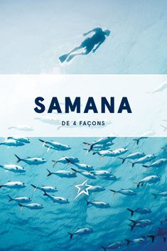 The Dominican eco-paradise of Samana has something for all types of adventurers: the wave runner, wildlife enthusiast, deep swimmer and high climber. Samana, Punta Cana, Trips To Dominican Republic, Air Transat, Never The Same, Excursion, Which One Are You, Waterfall, Surfing
