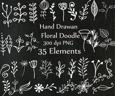 Chalkboard doodle flowers clipart: CHALK FLOWERS by ChiliPapers
