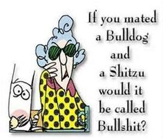 Maxine: If you mated a Bulldog and a Shitzu, would it be called a Bullshit? I seriously had too, couldn't resist lol Viernes Friday, Just In Case, Just For You, What Kind Of Dog, Friday Humor, Funny Friday, Funny Weekend, Bullshit, Just For Laughs