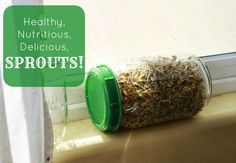 Five Little Homesteaders: Sprouts: The Garden-less Green - simplified instructions for inspiration - use organic sprouting seeds to avoid contamination with bacteria