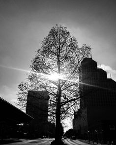 Good morning Buenos días from #downtown #orlando #florida #streetphotography #blackandwhite #sunlight #sunrise #igtoppicture #picoftheday #instadaily #nofilter #awesome