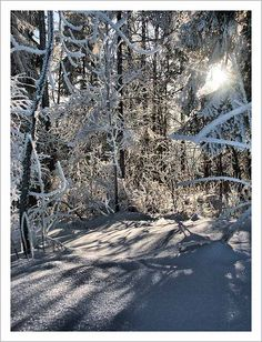 Somewhere in Pieniny Mountains..wintertime..