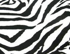 Anything Zebra