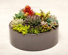 Large Concrete Planter Concrete Bowl by www.opusconcrete.com