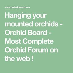 Hanging your mounted orchids - Orchid Board - Most Complete Orchid Forum on the web !