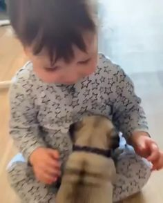Cute Little Animals, Cute Funny Animals, Animals For Kids, Animals And Pets, Nature Animals, Cute Funny Babies, Funny Dogs, Cute Kids, Cute Baby Videos