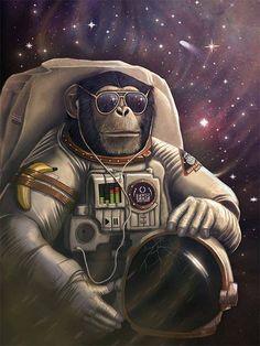 chimpanze astronaut - photo #10