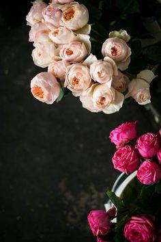 pink flowers from twig & twine / sfgirlbybay Flowers In The Attic, Little Flowers, May Flowers, Beautiful Flowers, Special Flowers, Bouquet, Planting Flowers, Flowers Garden, Flower Power