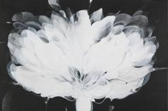 "Saatchi Art Artist Danilo Rojas; Painting, ""light flore   flor de luz"" #art"