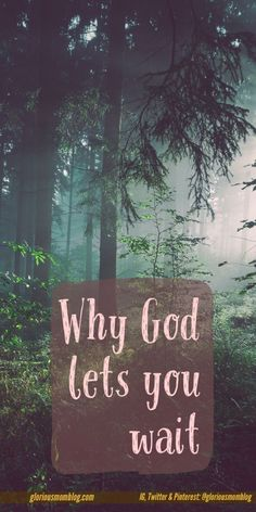 Why God lets you wait: Ever wonder why it takes so long for an answer to your prayers? Read more at http://gloriousmomblog.com