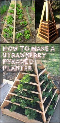 This Project Gives You Home Grown Strawberries in a Limited Garden Space