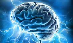 Determinadas facultades mentales requieren mayor cantidad de ciertos nutrientes para su restauración. Conoce los alimentos para el cerebro.