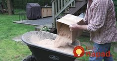 how to make grass grow fast fix bald spots, Step 1 Add saw dust or a bag of peat moss Grow Grass Fast, Growing Grass, Air Conditioner Screen, Lawn Care Tips, Dog Urine, Bald Spot, Thing 1, Peat Moss, Grass Seed