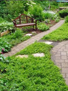 In places where a patch of green is desirable but the small or odd shape would make lawn chores difficult, try a groundcover like creeping jenny (Lysimachia nummularia ), which takes moderate foot traffic. Low Maintenance Landscaping, Low Maintenance Plants, High Maintenance, Kew Gardens, Outdoor Gardens, Formal Gardens, Outdoor Plants, Small Backyard Landscaping, Gardens