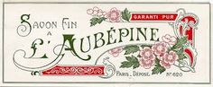 Image result for Victorian perfume labels