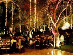 Hanging Lights Trees on Hanging Tree Lights Hanging Tree Lights, Tree Lighting, Outdoor Lighting, Fairy Lights, Lighting Ideas, Lighted Trees, String Lighting, Overhead Lighting, Accent Lighting